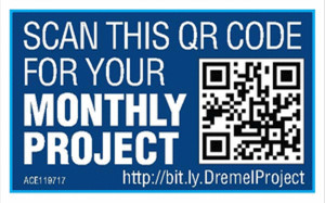 Ace Monthly Project QR Code
